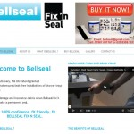 Bellseal Fix 'n Seal